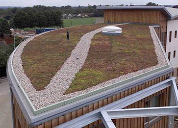 Sedum Roof Triton Systems